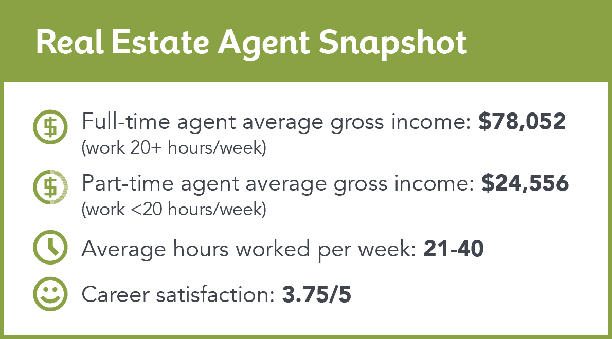 real estate agent income snapshot